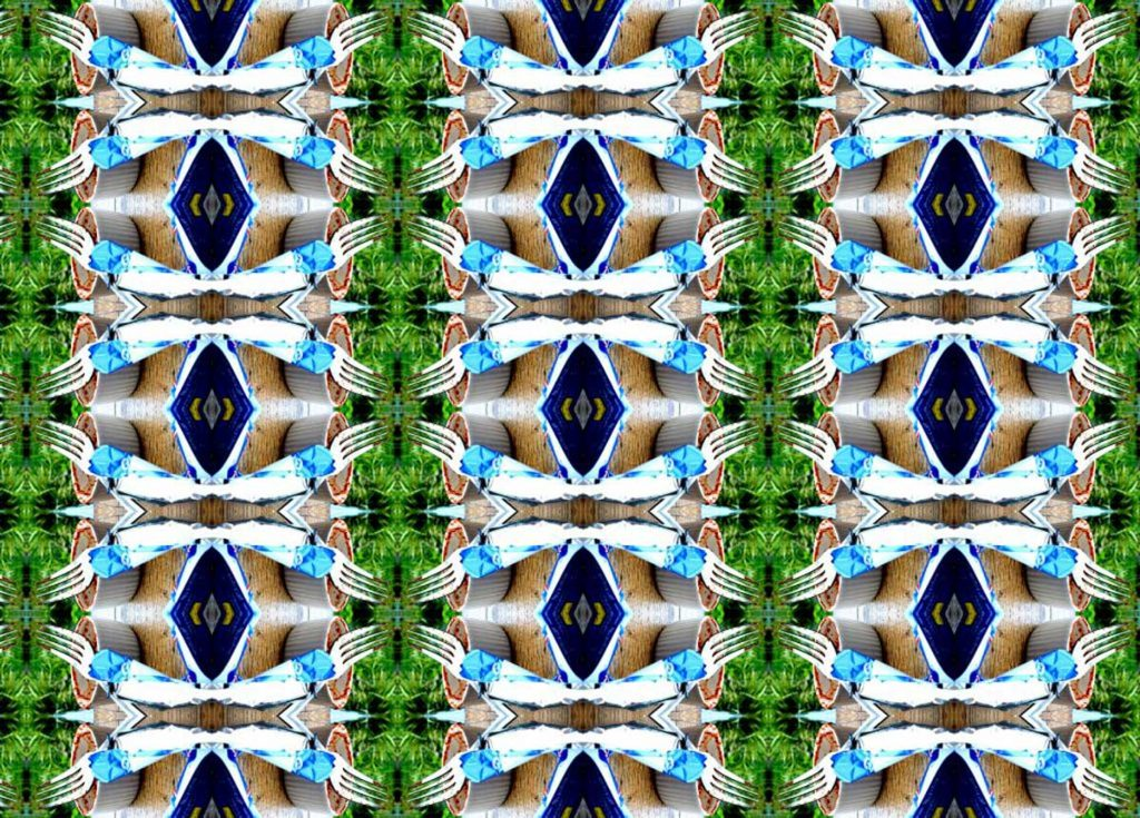 curtains pattern Kristina Veasey artist