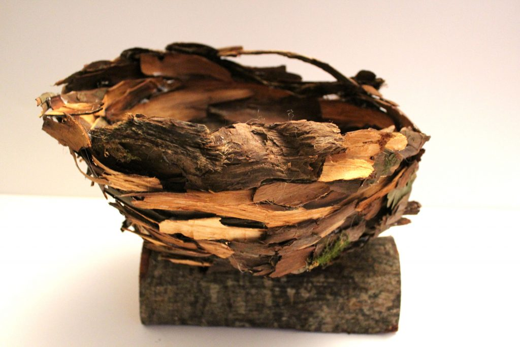 Basket made from yew bark rests on a log